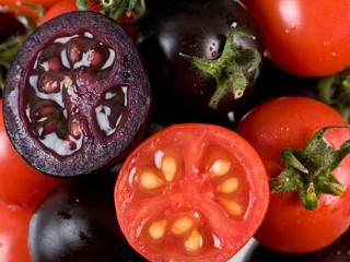ht_purple-tomatoes_081027_mn.jpg