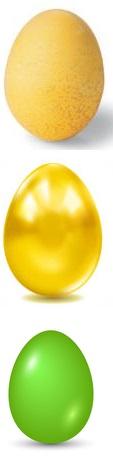 Как сделать яйца крепкими 377