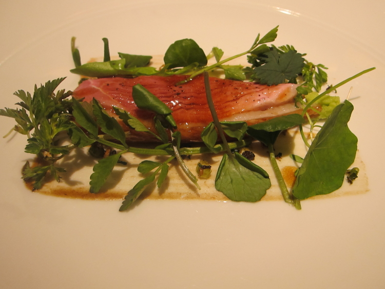 Duck with salad